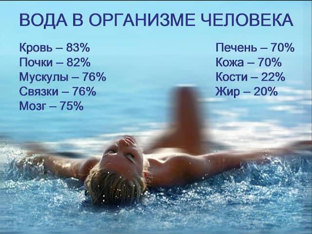 Сколько воды нужно пить в день взрослому человеку