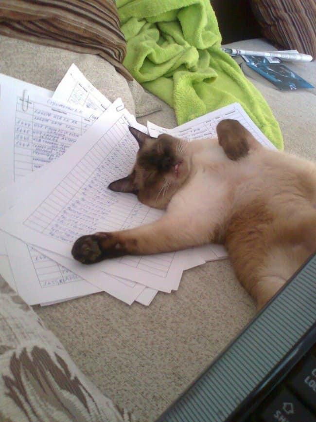 Синдром хронической усталости. Лечение