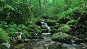 Какое значение имеют подземные воды для человека